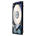 Жесткий диск HGST HTS545025A7E380